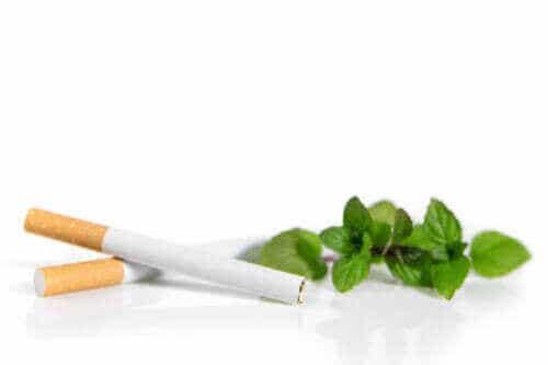 Varför mentolcigaretter kan vara skadligare än vanliga cigaretter