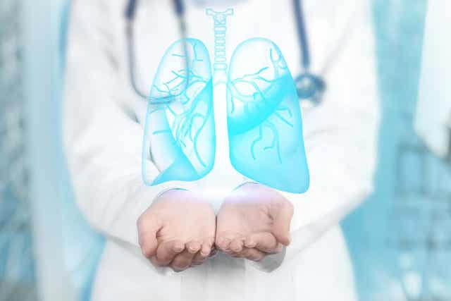 En bronkoskopi är en diagnostisk och terapeutisk teknik inom pneumonologi, den gren av medicin som studerar lungorna.