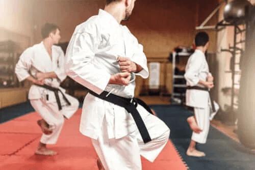 Skillnaderna mellan karate och taekwondo